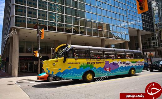 عکس/ اتوبوسهای دوزیست!