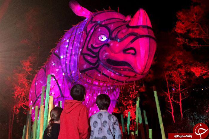 جشنوارهی نورانی سیدنی 2016+تصاویر