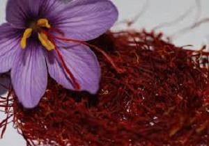 قیمت زعفران در بازار به ثبات رسید