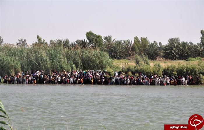 بحران در فلوجه / داعش مردم فلوجه را سپر انسانی خود قرار داده است+تصاویر
