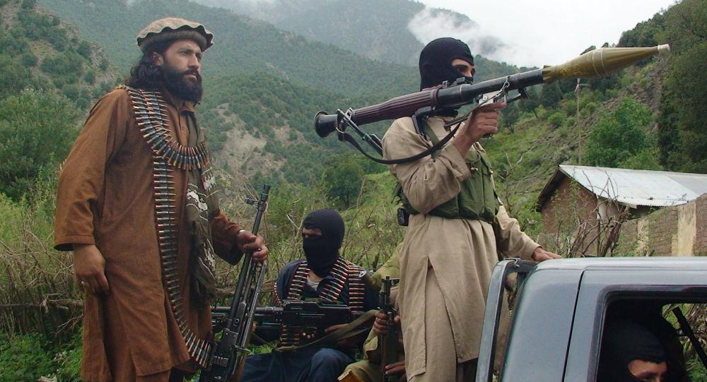 ۱۴ عضو طالبان در حمله هوایی ارتش افغانستان کشته شدند