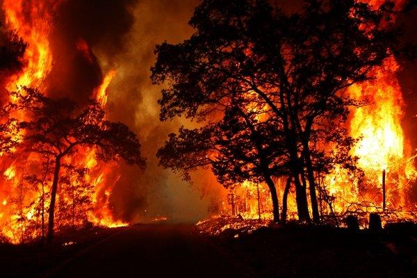 جنگلهای پاسارگاد در تعلل نیروی کمکی و نبود هواپیمای آبپاش همچنان میسوزد