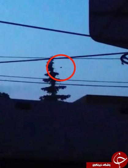 بشقاب پرندهی گرد در آسمان آمریکا + تصاویر