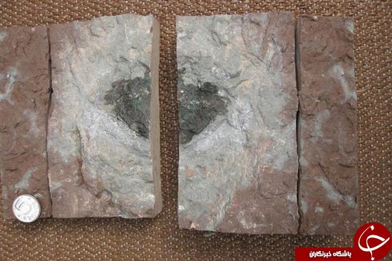 اولین سنگ آسمانی که به زمین افتاد کشف شد + تصاویر