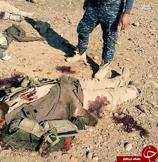 تلفات سنگین داعش در فلوجه +تصاویر