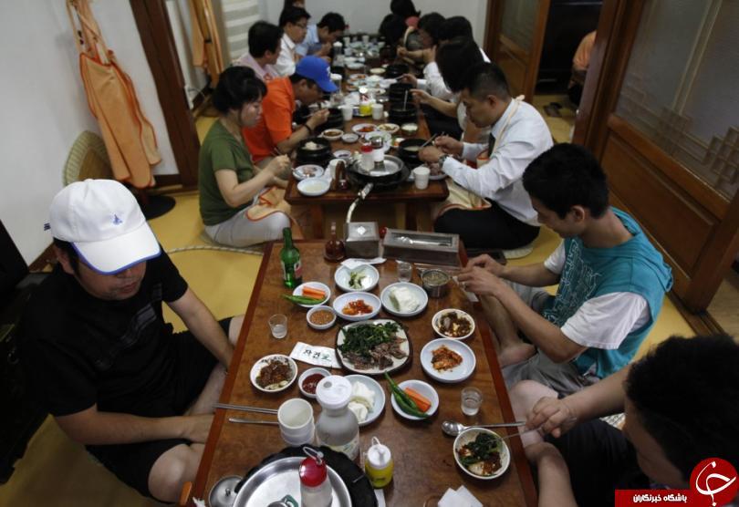 آغاز تهوعآورترین جشنواره جهان/ چینیها 10 هزار سگ را ظرف 10 روز میخورند!+10 عکس