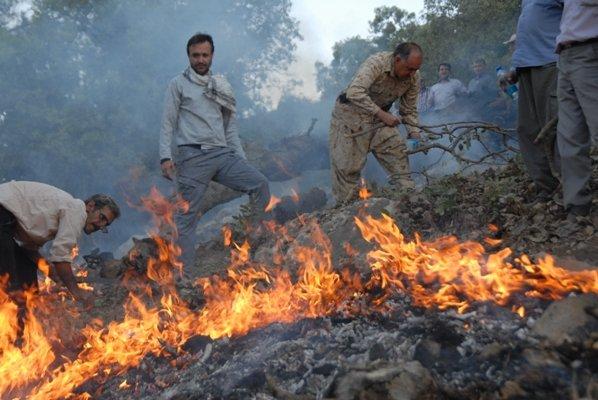 مهار آتش سوزی در طبیعت چناران