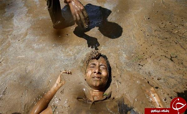 جشن کشت برنج در نپال + تصاویر