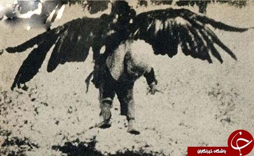 شکار پسر بچهای ۳ ساله توسط عقاب +عکس