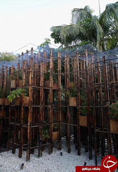 آیا باغهای آینده این شکلی خواهند بود +تصاویر