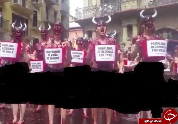 غیر اخلاقیترین روش دختران اسپانیایی برای مخالفت با جشنواره گاوبازی+ تصاویر