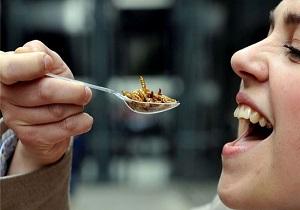حکم شرعی خوردن حشرات/ ملخخواری حرام است یا حلال؟