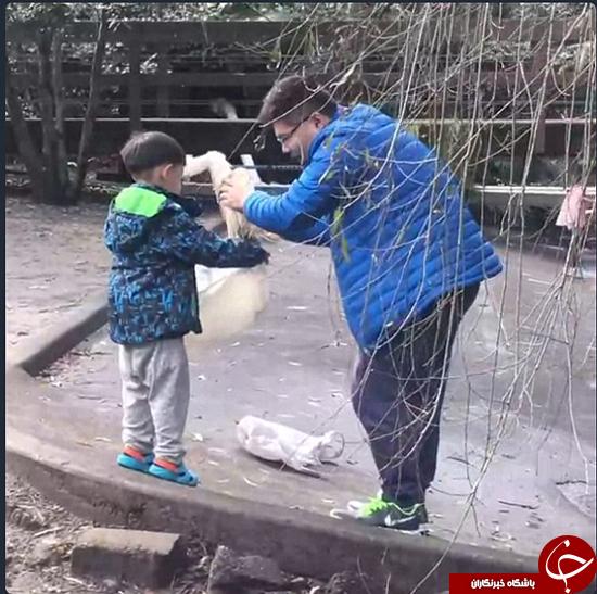 تلاش برای دزدیدن اردک از باغ دولتی +عکس