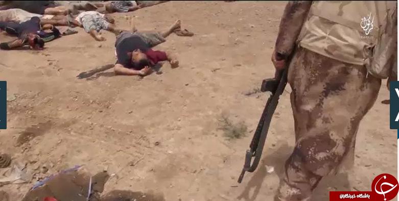 تلخ ترین اعدام شیعیان به دست تروریستهای داعشی+تصاویر(18+)