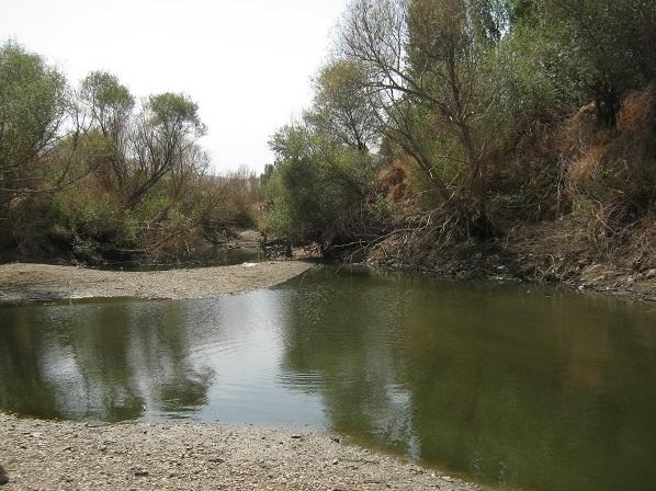 تاراج شن و ماسه به قیمت خشکاندن رودخانه/فرسایشی که بقاء زیست محیطی را به مخاطره میاندازد