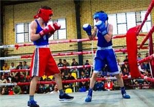 درخشش نونهالان بوکسور اردبیلی در مسابقات قهرمانی کشور