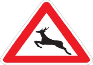 تابلوی حفاظت از حیات وحش در جاده های اردبیل نصب می شود