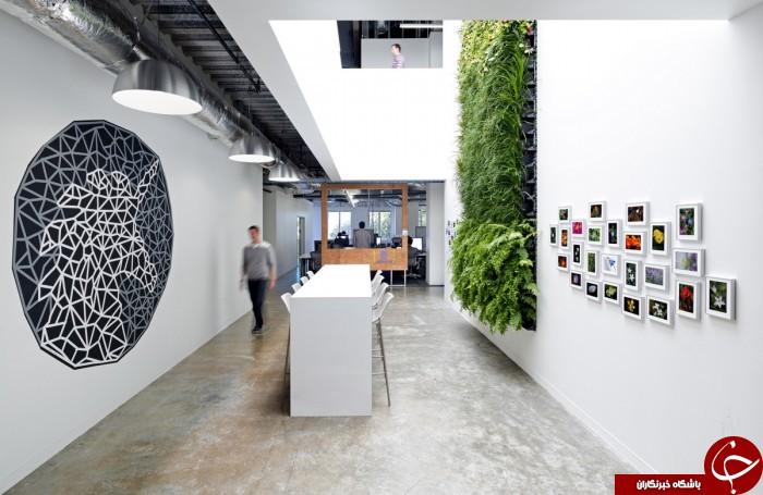 کارمندان فیسبوک در مکانی رویایی کار می کنند+ 15 عکس
