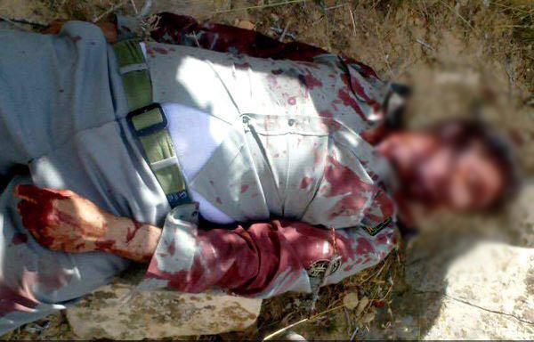 سومین محیطبان در 48 ساعت گذشته به درجه رفیع شهادت نائل شد