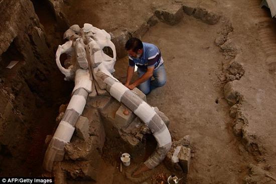 باشگاه خبرنگاران -کشف ماموت 14 هزار ساله 10 تنی+تصاویر