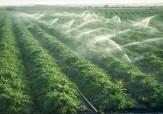 باشگاه خبرنگاران - افزایش بهره وری کیفیت محصولات کشاورزی را به همراه دارد
