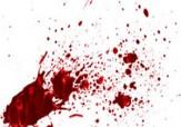 باشگاه خبرنگاران - خودزنی مرد پس از کشتن همسر