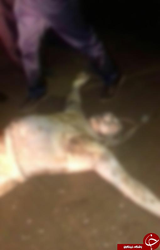کشف جسد مرد ناشناس در ساحل گهرباران+ تصویر 18