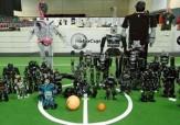 باشگاه خبرنگاران -اعزام کاروان جمهوری اسلامی ایران به مسابقات جهانی ربوکاپ 2016 آلمان