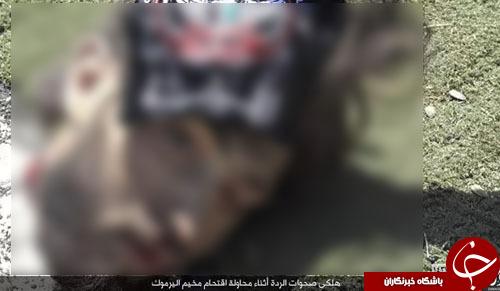 بیحرمتی تروریستهای داعش به پیکر بیجان قربانیان در سوریه (تصاویر۱۸+)