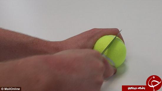 از ارزان ترین در باز کن تا سیم نگه دار با توپ تنیس +تصاویر