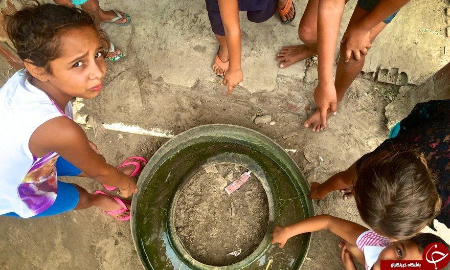 سفر به برزیل برای مقابله با ویروس زیکا+ تصاویر