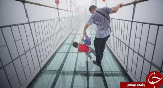 راه رفتن بر روی بلندترین مسیر شیشه ای دنیا +تصاویر