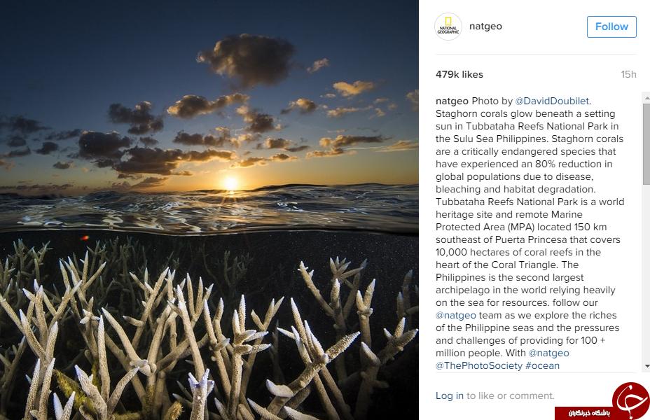 دیدنی های طبیعت در اینستاگرام نشنال جئوگرافی +10 عکس