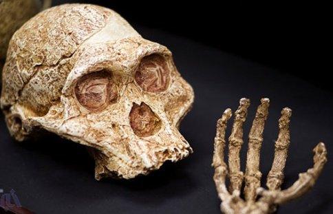 بیماری که 1.7 میلیون سال همراه انسان بوده است+ عکس