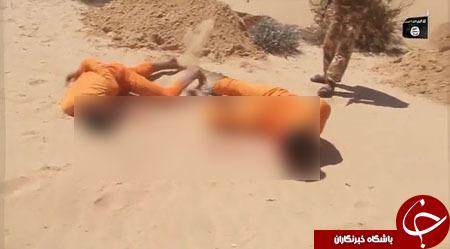 نمایش جنایات فجیع تروریستهای داعش در صحرای سینا+ تصاویر