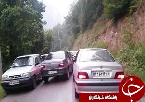 شهروندخبرنگار:فرهنگ عجیب ترافیکی در جنگل! + فیلم