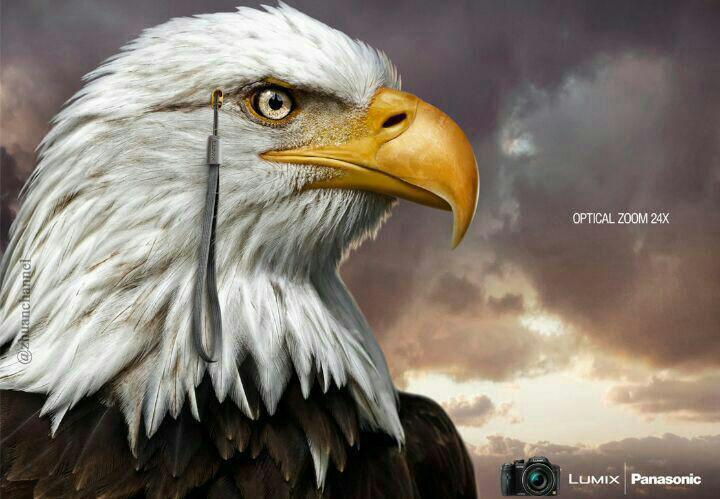 دوربيني با قدرت چشم عقاب