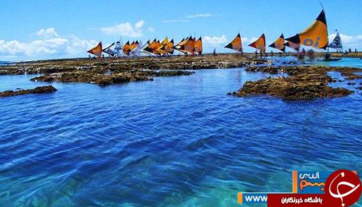 عکس/ برزیل؛ از زیباترین ساحل دنیا تا فستیوالهای رنگی