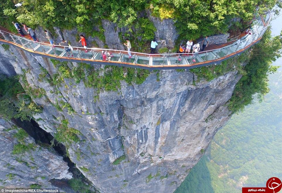 چه کسی جرات دارد از این پل عبور کند + تصاویر