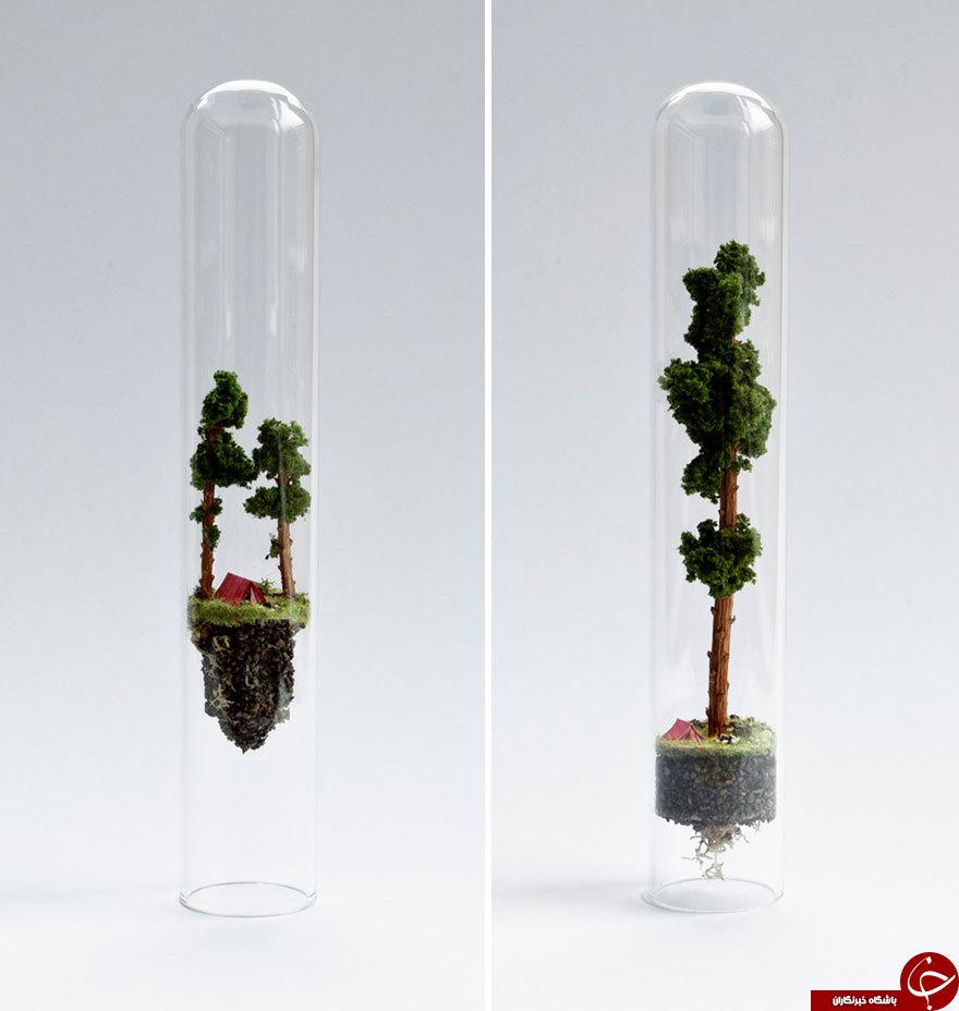 ماکت هایی از طبیعت درون لوله آزمایش+تصاویر