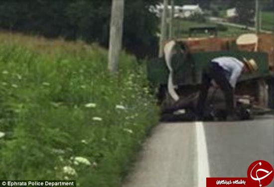 اسبی که بخاطر کشیدن بار زیاد جان خود را از دست داد +تصاویر