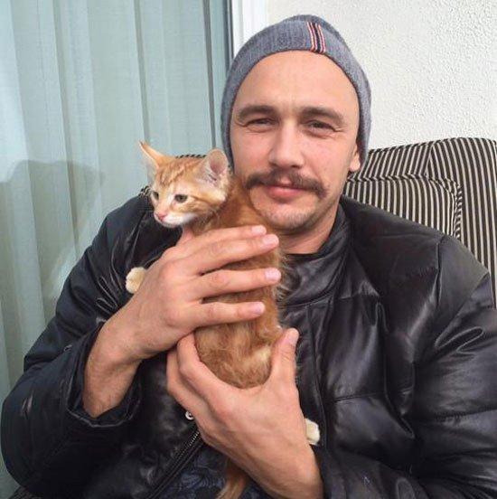 8 آگوست، روز بین المللی گربه ها/چه کسانی در جهان عاشق گربه هستند؟!+تصاویر