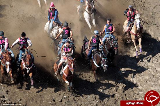 تصاویری از مسابقه