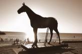 باشگاه خبرنگاران -ساخت اسب تروجان با قطعات کامپیوتر +تصویر