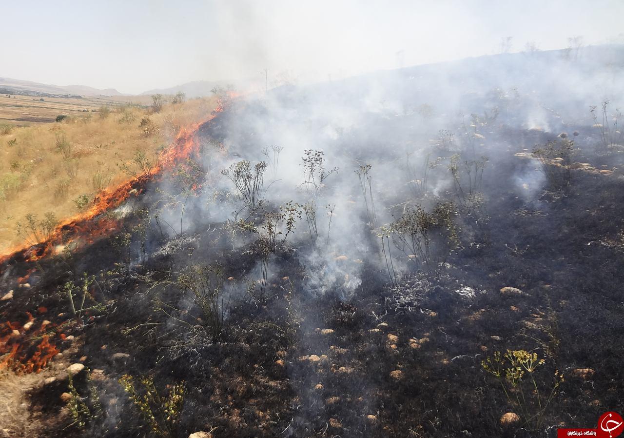 جنگل گیان در محاصره آتش