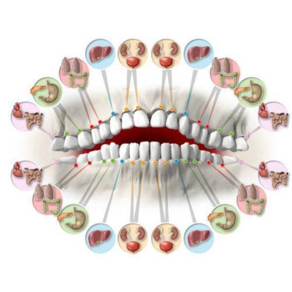 شخصیتشناسی جالب از روی شکل و شمایل دندان