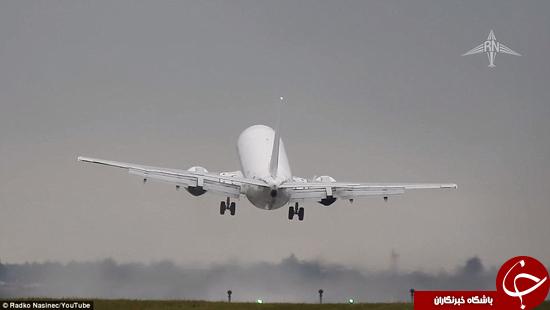 لحظه وحشتناکی که در فرودگاه پراگ اتفاق افتاد +تصاویر