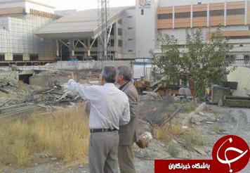 باشگاه خبرنگاران -درختان بلوار اصلی اکباتان قطع شده اند