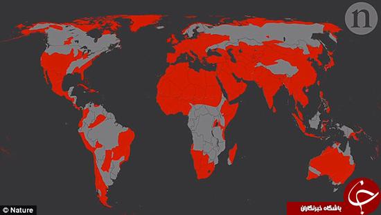 جمعیت زمین به 8.5 میلیارد نفر خواهد رسید! +تصاویر