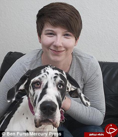 سگی که شبکههای اجتماعی را قبضه کرده است +تصاویر